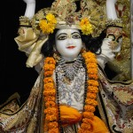 Gaura Nittai 1