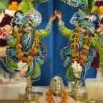 Gaura Nittai 4