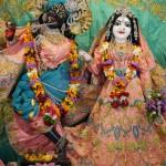 Radha Govadhandari 1