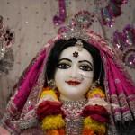 Radha Govadhandari 5