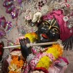 Radha Govadhandari 6