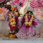 Radha Govadhandari 7
